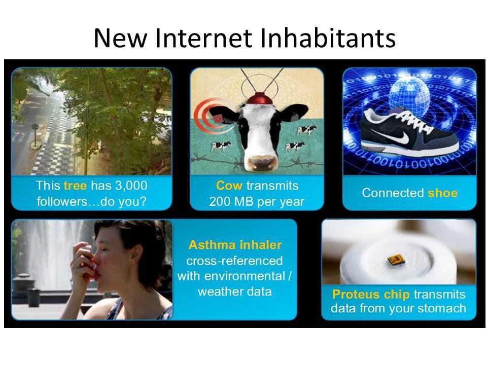 IoT inhabitants